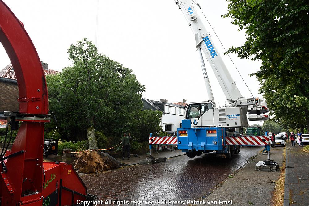 Zomerstorm - In Soest is op de Beetzlaan een boom omgewaaid tijdens de storm op 25 July, De boom raakt net de twee huizen niet maar richte wel schade aan.