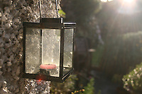 Candle lantern hanging on pebbledashed wall in gardin in Ireland