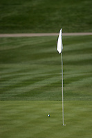 4 February 2007:  Lone golf ball near the hole and flag on 16th during the final round at the FBR Open in Phoenix, AZ.