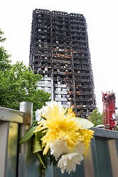 © Licensed to London News Pictures. 03/07/2017. London, UK. Flowers left underneath Grenfell tower block in Notting Hill, west London where it is estimated that over 80 people died in a huge fire, believed to have been caused by a fridge fire which spread when the building cladding caught fire.. Photo credit: Andre Camara/LNP