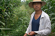 "(MODEL RELEASED IMAGE).""Never could we have imagined that we would ever have this much to eat,"" says Grandfather Cui, reflecting on his childhood in the village as he has a smoke in his cornfield. Hungry Planet: What the World Eats (p. 91). The Cui family of Weitaiwu village, Beijing Province, China, is one of the thirty families featured, with a weeks' worth of food, in the book Hungry Planet: What the World Eats."