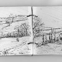 Sketchbook drawing of agriculural land in Devon, England.