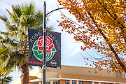 Rose Parade Flag on Colorado Boulevard in Pasadena