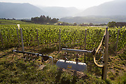 Water irrigation vineyards in the wine growing region south-west of Bolzano, South Tyrol, northern Italy.