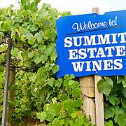 Summit Estate Winery