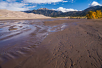 Medano Creek flows seasonally around the dunefield.  The creek orginates in the Sangre De Cristo Mountains and carries precious moisture to the desert San Luis Valley.  Great Sandunes National Park and Preserve, Colorado, USA.