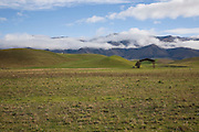 Green pasture in the Hakataramea Valley.