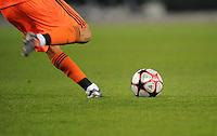 FUSSBALL   CHAMPIONS LEAGUE   SAISON 2009/2010   GRUPPENPHASE VfL Wolfsburg - Besiktas Istanbul            21.10.2009 Symbolbild Fussball