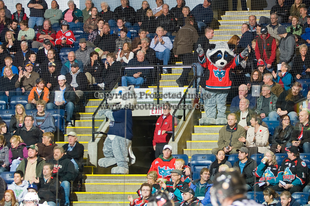 KELOWNA, CANADA, NOVEMBER 9: Husky and Rocky pump up the fans as the Red Deer Rebels visit the Kelowna Rockets  on November 9, 2011 at Prospera Place in Kelowna, British Columbia, Canada (Photo by Marissa Baecker/Shoot the Breeze) *** Local Caption ***