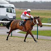 Lingfield 28th December 2012