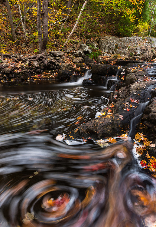 Long exposure creates a swirl of colorful leaves in Duck Brook, Acadia National Park, Maine