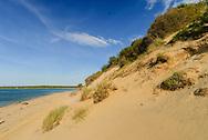New York, Hamptons, Sag Harbor, Barcelona Point