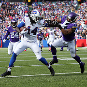 2014 Vikings at Bills