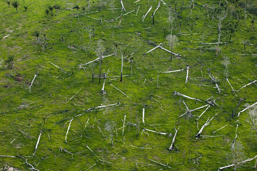 Dec. 3, 2003: Deforestation near Parana do Uruara in the Brazilian Amazon. ©Daniel Beltra