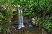 Cucumber Falls, Ohiopyle State Park, Pennsylvania.