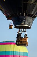 Three hot air balloons rise into a clear blue sky, Crown of Maine Balloon Fair, Presque Isle, Maine.