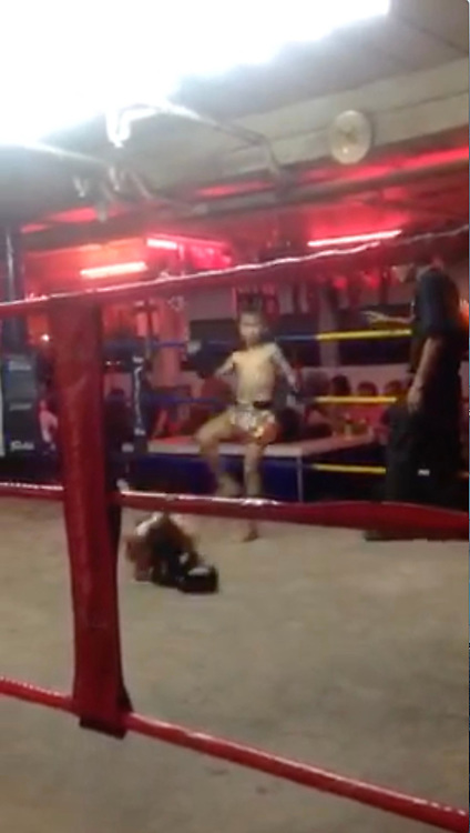 """This is the SHOCKING brutal moment two 9 year old Muay Thai boxers knock each other out in brutal fight in Thailand's sex capital Pattaya. <br /> <br /> Tourist Jack Ryan, 41, from Manchester took the footage while on his way to walking street, Pattaya's sex capital hotspot where thousands of prostitutes work.<br /> <br /> He decided to walk into a group of beer bars just before the famous walking street after seeing a huge boxing ring with young kids fighting in the middle of these small bars where prostitutes sit and wait for foreign customers, """"you can buy sex here for as little as 20"""" Jack said.<br /> <br /> The shocking footage shows two young kids aged around 9 years old fighting brutally, the child in the black shorts punches his opponent giving him left and right hooks, he then elbows and kicks his opponent, pushing him to the corner were he releases a flurry of punches.<br /> <br /> The young opponent in the red and gold shorts then fights back with four hard kicks to the head and then the 5th kick knocks the child in black shorts to the floor. You can hear women in the background scream with emotion.<br /> <br /> After the ref briefly checks on the young boy, the fight starts again. The boy with the red and black shorts un leashes many punches and knees his opponent in a shocking fight which knocks the young boy out once again.<br /> <br /> Jack who watched the fight said """"I spotted the young boys fighting so went to look and saw up close that these were kids not older than 9 years old beating each other hard""""<br /> <br /> He continues """"I was surprised to see how brutal this was and took a short clip before one of the adult fighters begin to shout at me, so I quickly left""""<br /> ©Exclusivepix Media"""
