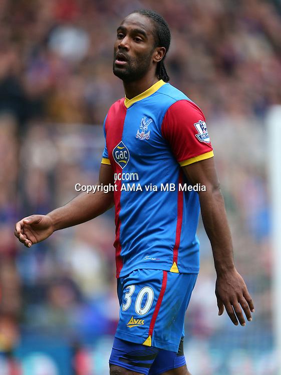 Cameron Jerome of Crystal Palace