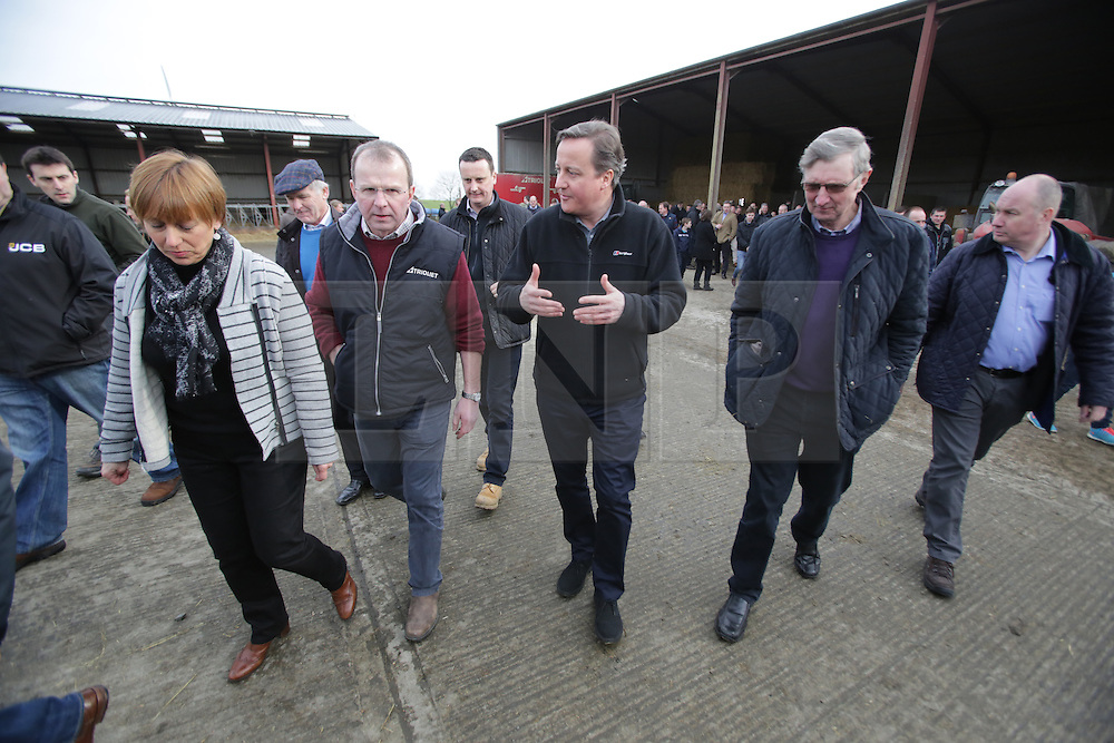 Licensed to London News Pictures. 27/02/2016. Ahoghill, County Antrim, Northern Ireland, UK. Prime Minister David Cameron (3R) walks the Farmer Harry Johnston (4L) during a walk about on  his dairy farm in Ahoghill, County Antrim. The Prime Minister was on a tour to persuade voters that membership of a reformed EU is in their best interests. Photo credit : Paul McErlane/LNP