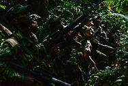 Un grupo de guerrilleros se pone en alerta tras por la presencia de aeronaves del ejercito en la zona, frecuentemente los guerrilleros son bombardeados.  <br /> Photo Federico Rios / Native