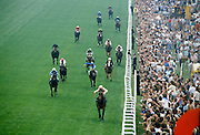 Crowds of spectactors by the winning post at the racetrack at Epsom Racecourse for Derby Day, UK