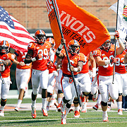 University of Illinois Football (2013)
