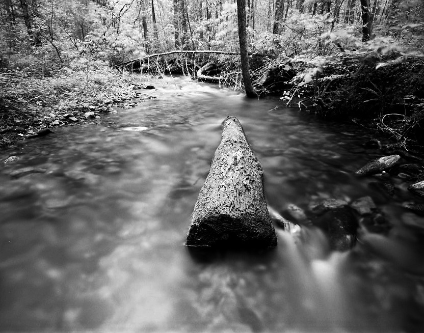 Jones Creek - North Georgia - Chattahoochee National Forest - Mamiya 7II/43mm lens/Ilford Film