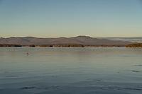 Lake Winnipesaukee Ice.  Karen Bobotas for the Laconia Daily Sun