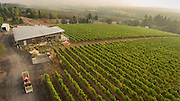 Aerial view over Raptor Ridge winery and estate vineyard during 2016 harvest, Chehalem Mountains ava, Willamette Valley, Oregon