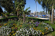 Immenstaad, Seepromenade, Bodensee, Baden-Württemberg, Deutschland