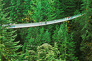 Capilano Suspension Bridge; Vancouver, British Columbia, Canada.