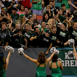 Sep 12, 2009; New Orleans, LA, USA; Tulane Green Wave fans cheer from the stands against the BYU Cougars at the Louisiana Superdome.  BYU defeated Tulane 54-3. Mandatory Credit: Derick E. Hingle-US PRESSWIRE