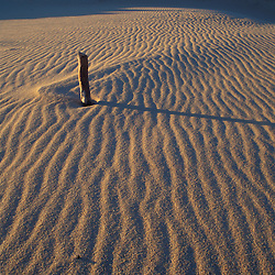 Patterns in the sand at Parker NWR, Plum Island, Massachusetts