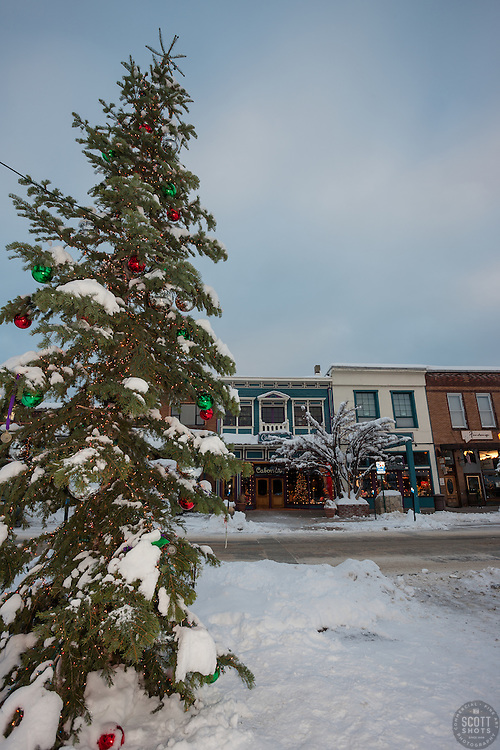 """Snowy Christmas Tree in Truckee 5"" - This snow covered Christmas tree was photographed in Downtown Truckee, California."