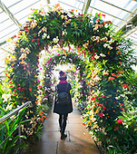 Kew Gardens Thai Orchid Festival 8th February 2018