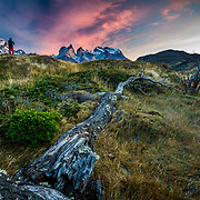 Photographer at sunrise Chile, Magallanes Region, Torres del Paine National Park, Lago Pehoe, landscape, dawn.