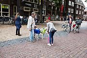 In Utrecht kijken een meisje een vrouw naar twee windhonden op het Domplein. Twee fietsers staan met elkaar te praten, een vrouw zoekt iets op de iPad.<br /> <br /> In Utrecht a young girl and a woman take a look at two greyhounds. Two women on a bike talk to each other, a woman is looking at het ipad.