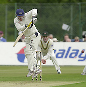 2003 - Cricket - Frizzell County Championships Div 1. Sussex CCC v Nottinghamshire CCC.21/05/03 - Photo Peter Spurrier.Murrey Goodwin... [Mandatory Credit:Peter SPURRIER/Intersport Images]