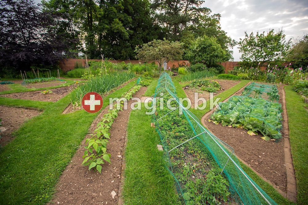 Vegetable and herb garden at Dev Aura in Tetford, Lincolnshire, Great Britain, Monday, June 23, 2014. (Photo by Patrick B. Kraemer / MAGICPBK)