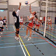 Volleybal Volleybal Gemeni S - Wilhelmina D2, smashen, net, bal, dames