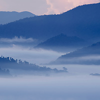 A pre-dawn light casts a blue glow over rising mist in Sabah's Danum Valley Conservation Area, northern Borneo. Sabah, Malaysia.