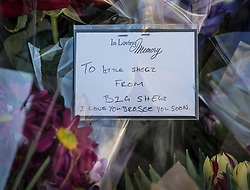 © Licensed to London News Pictures. 05/04/2018. London, UK. A note on flowers left in tribute, says ' To Little Shegz from Big Shegz - I love you bro see you soon' (thought to be from the brother of murder victim Israel Ogunsola) near where here was stabbed in Link Street. Police were approached by a man suffering from stab injuries at 8pm last night he was pronounced dead at 8. 24pm by officers. Photo credit: Peter Macdiarmid/LNP