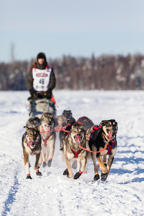 Musher Nicolas Petit after the restart in Willow of the 46th Iditarod Trail Sled Dog Race in Southcentral Alaska.  Afternoon. Winter.