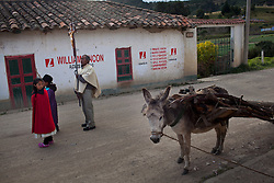Dec. 20, 2011 - Laguna De Tota, Colombia. A donkey on the side of the road during a religious procession. © Nicolas Axelrod / Ruom