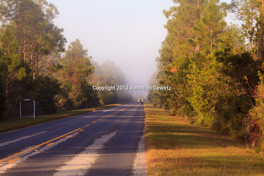The main road through Everglades National Park on a foggy morning. WATERMARKS WILL NOT APPEAR ON PRINTS OR LICENSED IMAGES.