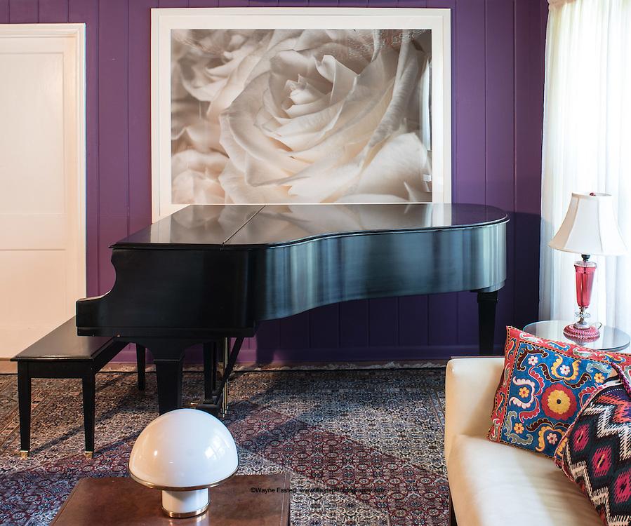 White Rose archival photogrphic print. Residence, Sarasota, FL