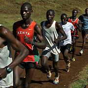 Kenyan long distance runners train in the high altitude village of Iten. The recent post-election violence in Kenya disrupted many runners' training programs, but they are now back in training for the upcoming Olympic games in China and other international events.  /// ..Kenyan long distance runners go for an early morning run in the high altitude village of Iten, in Kenya's rift valley.