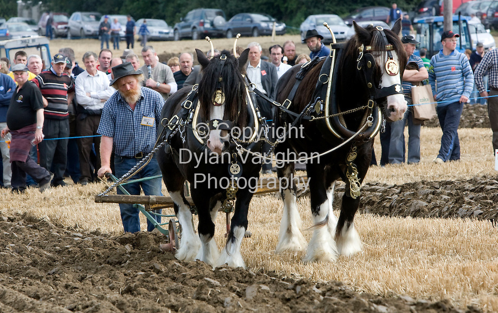 24/9/2008.Godfrey Worrell from Kildare pictured taking part in the National Ploughing Championships in Kilkenny yesterday..Picture Dylan Vaughan.