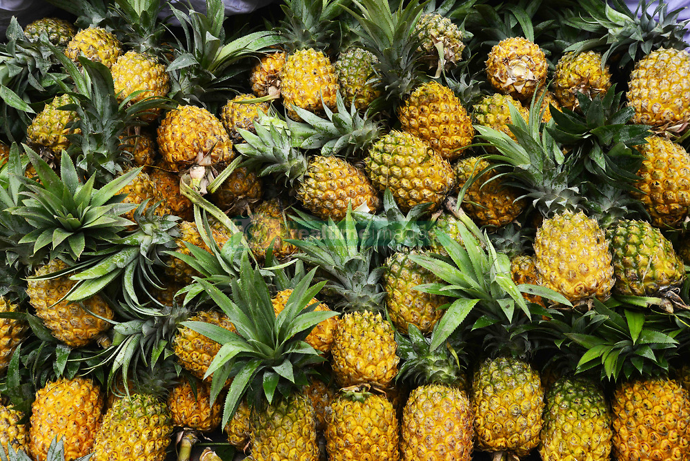 June 16, 2017 - Dhaka, Bangladesh - Pineapples displayed in the National Fruit exhibition at Agricultural Institute in Dhaka, Bangladesh, on June 16, 2017. Bangladesh Agriculture Minister organized a National Fruit exhibition from June 16 to June 18 at Agricultural Institute in Dhaka. Many Government and Privet organization participants with National and International fruits the National Fruit exhibition in Bangladesh. (Credit Image: © Str/NurPhoto via ZUMA Press)