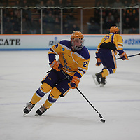Men's Ice Hockey: Hobart and William Smith Colleges Statesmen vs. University of Wisconsin-Stevens Point Pointers